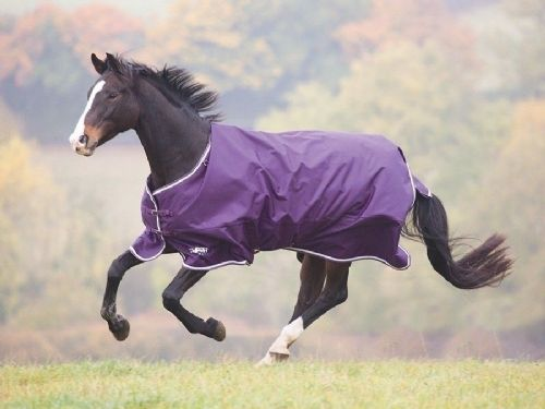 Tempest Plus 200 Turnout Rug
